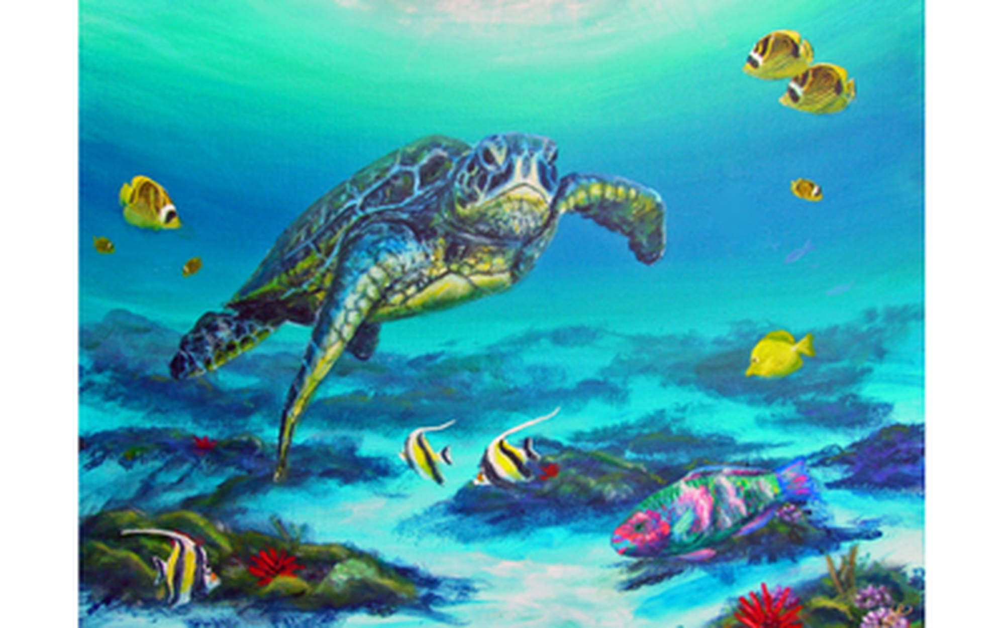 Hawaii sea turtle with parrot fish sea life art business for Turtle fish paint