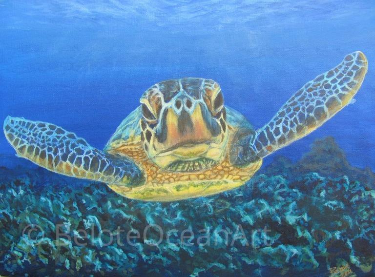 Underwater paintings directory find underwater paintings for Turtle fish paint